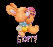 Sorry - EasterBunnyWithEgg16