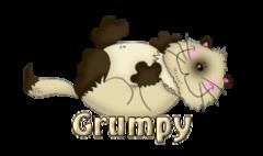 Grumpy - KittySitUps