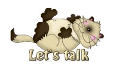 Let's talk - KittySitUps