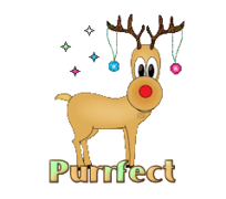 Purrfect - ChristmasReindeer