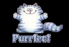 Purrfect - CoolDanceMoves