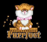 Purrfect - CuteKittenSitting