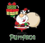 Purrfect - SantaDeliveringGifts