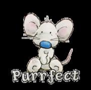 Purrfect - SittingPretty