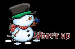 What's up - Snowman&Bird