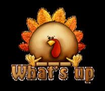 What's up - ThanksgivingCuteTurkey