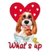 What's up - ValentinePup2016