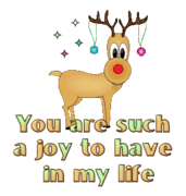 You are such a joy to have in my life - ChristmasReindeer