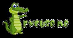 Excuse me - CrocodileTeeth