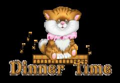 Dinner Time - CuteKittenSitting