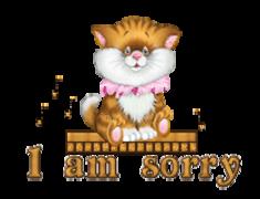 I am sorry - CuteKittenSitting