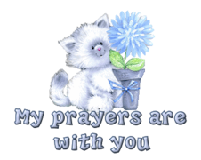 My prayers are with you - CuteKitten
