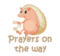 Prayers on the way - CutePorcupine