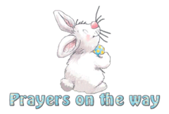 Prayers on the way - HippityHoppityBunny