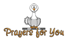 Prayers for You - OstrichWithBlinkie
