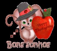 Bons sonhos - ThanksgivingMouse