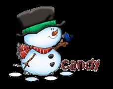candy (LC) - Snowman&Bird