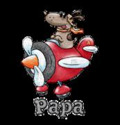 Papa - DogFlyingPlane