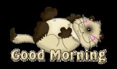Good Morning - KittySitUps