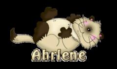 Ahrlene - KittySitUps