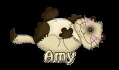 Amy - KittySitUps