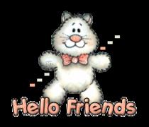Hello Friends - HuggingKitten NL16