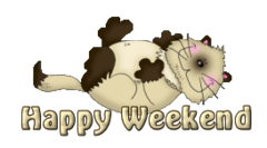 Happy Weekend - KittySitUps