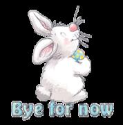 Bye for now - HippityHoppityBunny