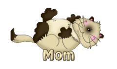 Mom - KittySitUps
