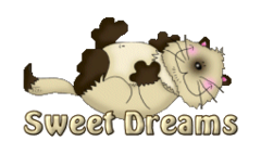 Sweet Dreams - KittySitUps
