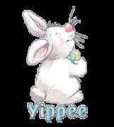 Yippee - HippityHoppityBunny