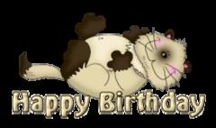 Happy Birthday - KittySitUps