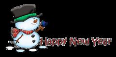 Happy New Year - Snowman&Bird