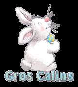 Gros Calins - HippityHoppityBunny