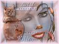 Little Kitten les van Marinette