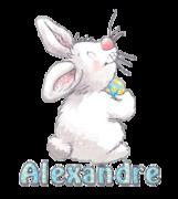 Alexandre - HippityHoppityBunny