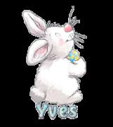Yves - HippityHoppityBunny