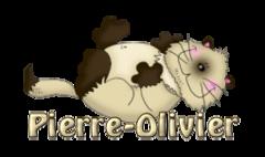 Pierre-Olivier - KittySitUps
