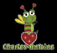 Charles-Antoine - BeeHeart