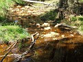 A creek with water in it!! 002