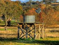 Windmill & Tank near Cowra 002