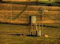 Windmill & Tank near Cowra 003