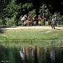 Lakeside Band
