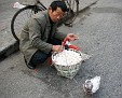 DSC04327`10101031`rhc All my own work - honest`101031a Morning Market`