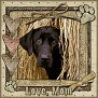 dcd-Love, Mom-In The Hay