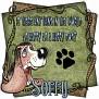 dcd-Sorry-Happy Dog