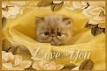 unhappy-loveyou