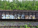 Mostly spray graffiti art