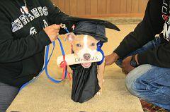 Graduation-10am (150)
