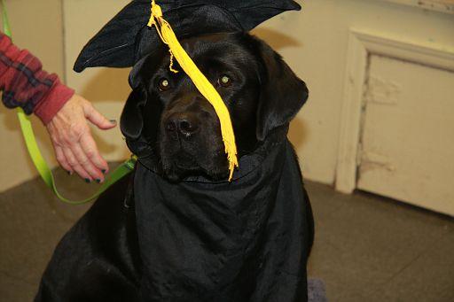 12-11-17-Graduation-M1 (1)